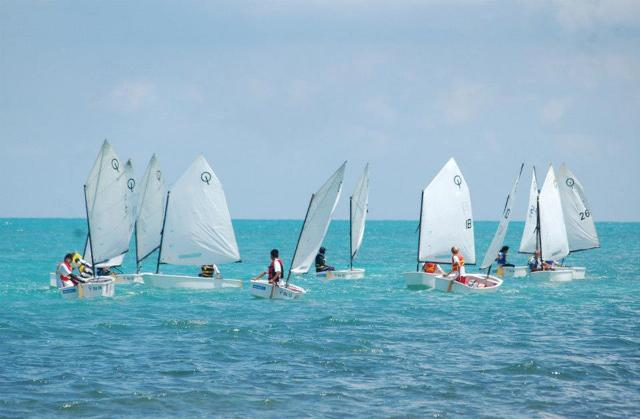 Optimist Regatta
