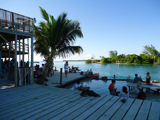 Lazy Lizard bar at Caye Caulker split