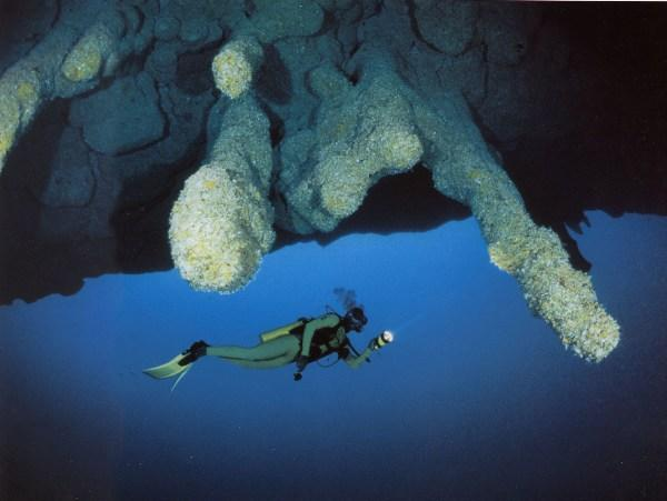 diving the great blue hole belize