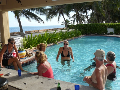 swim up pool bar ambergris caye