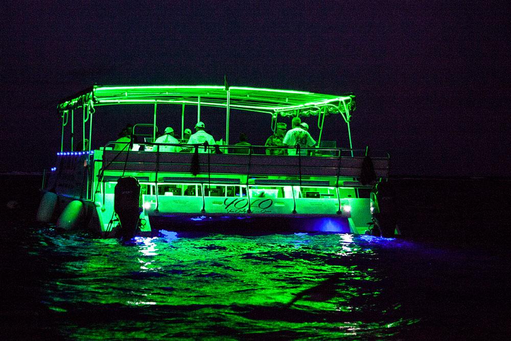 Night-Cruise-YOLOjpg