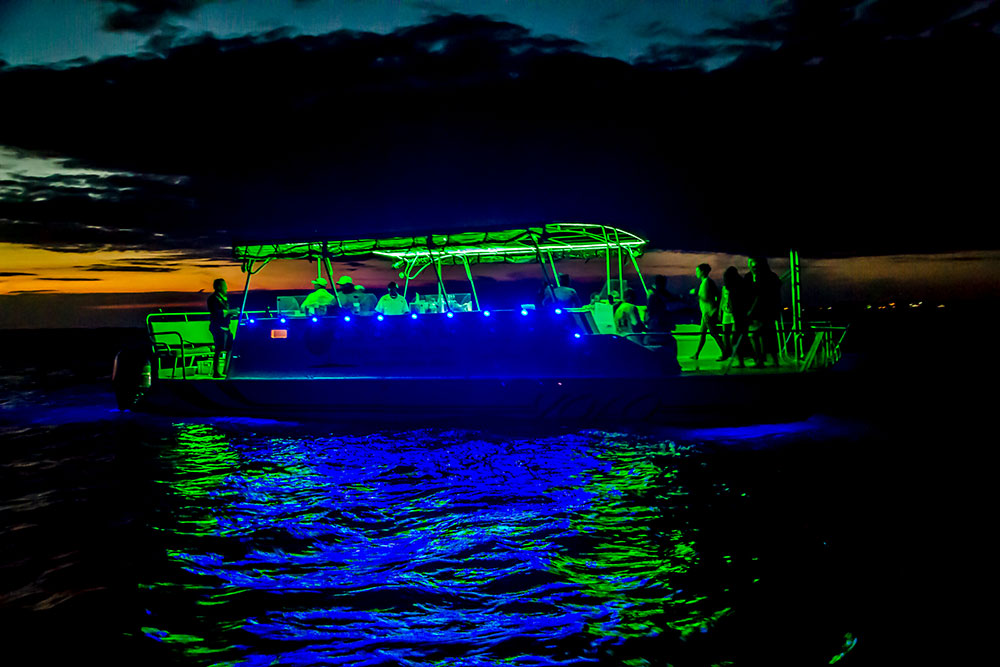 Night-Cruise