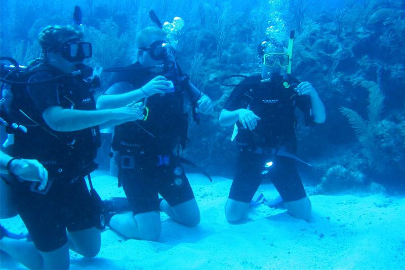 belize dive certification