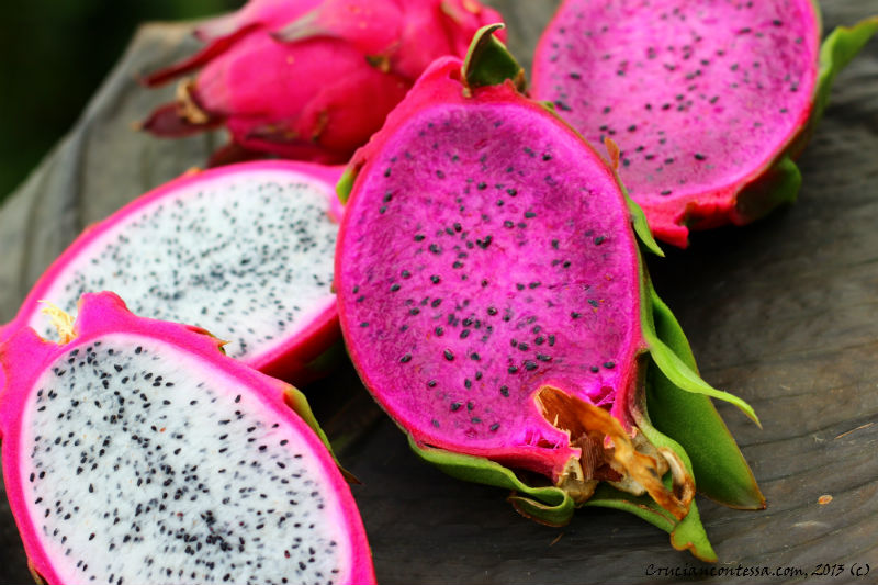 fruit center what is dragon fruit